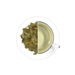 Letáček Ajurvédské čaje