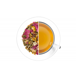 Rooibos Magic Aloe