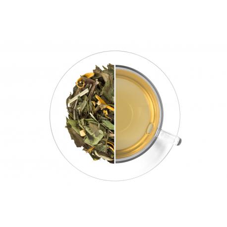 Ľadový čaj Citrus - zázvor 50g