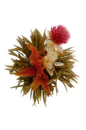 Bai He Xian Zi Divine Lily
