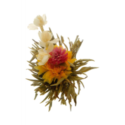 Man Tian Xian Tao Sacred Flowers