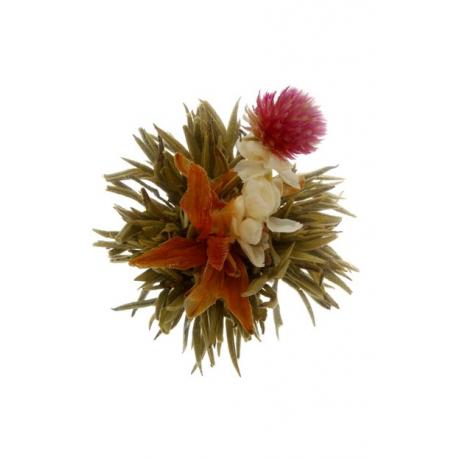 Bai He Xian Zi Divine Lily - 1pcs