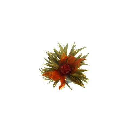 Xu Ri Dong Sheng Aufgehende Sonne 1 Stück (Blütentee)