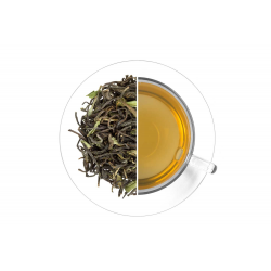 Nilgiri Frost tea 50 g čerstvá sklizeň 2021