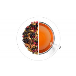 Rooibos Forest Energy 70 g