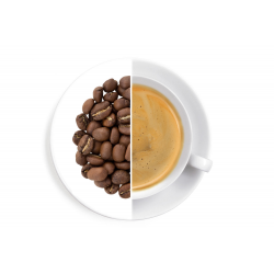 Etiopie Sheka Forest - káva 1 kg