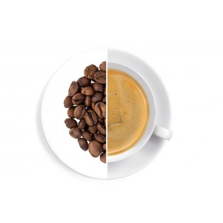 Costa Rica Sonora Venecia Honey – Kaffee 1 kg